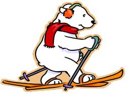 Bears can ski